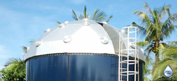 Mái che dạng vòm cho bể aquatank